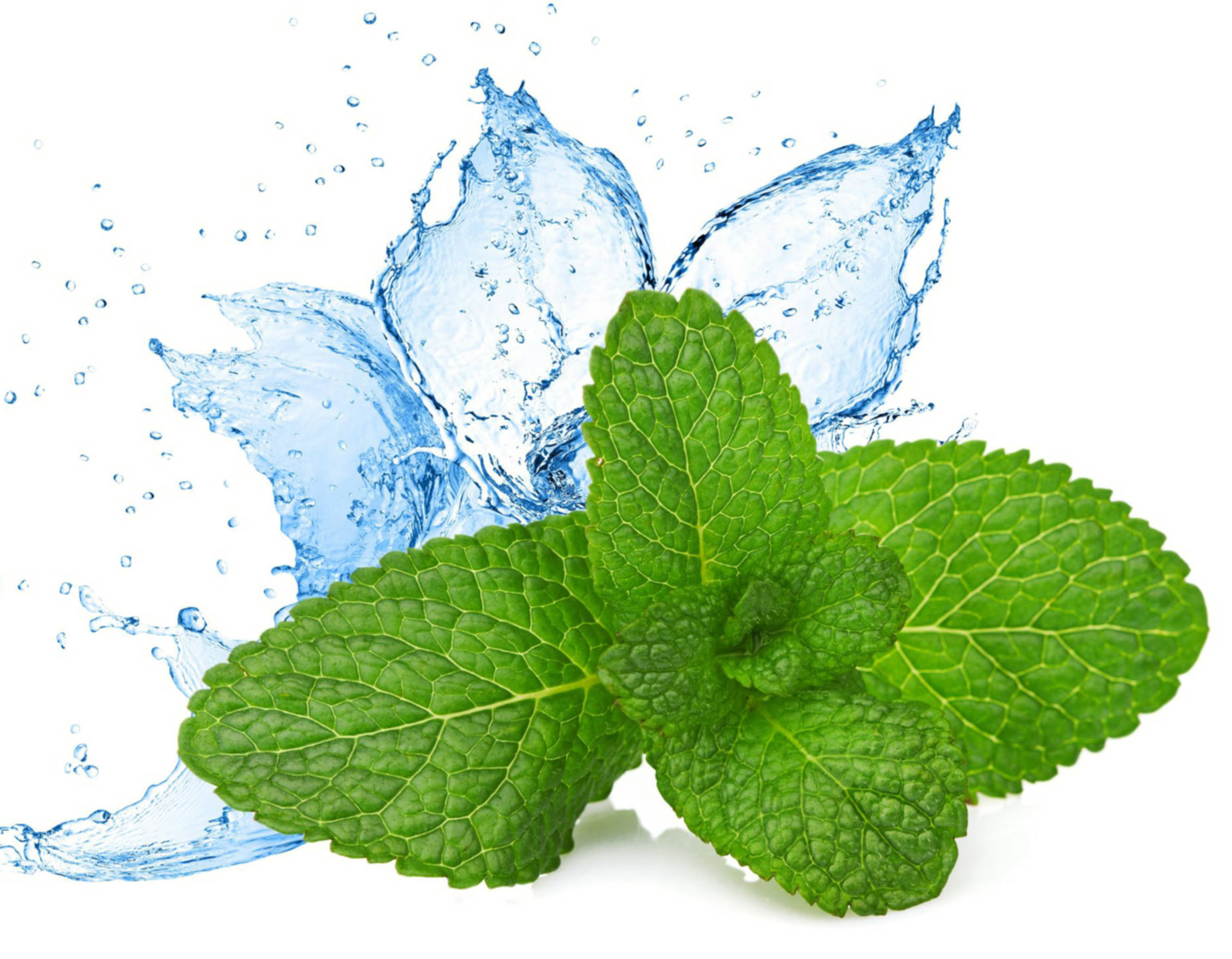 Ароматическая и душистая вода